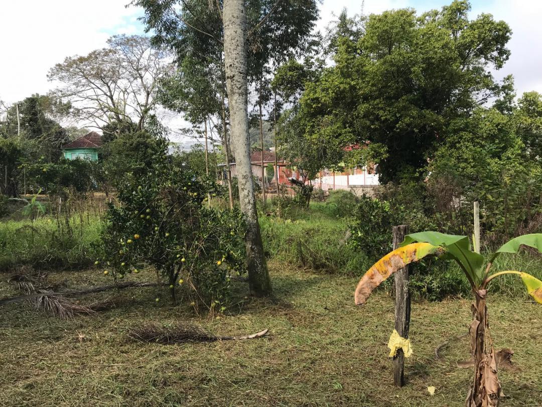 TerrenoVenda em SAPIRANGA no bairro Amaral Ribeiro
