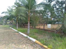 TerrenoVenda em Portão no bairro Centro
