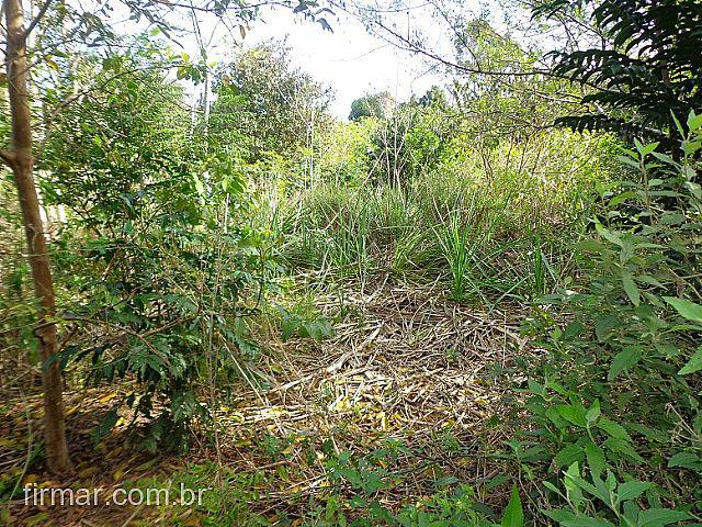 Terreno para Venda em São Leopoldo no bairro Scharlau